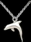 Dolphin Silver